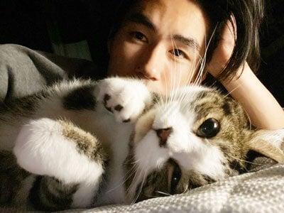 「かまちょ」と「モテ男」な2匹の愛猫を紹介します。とにかくかわいい!