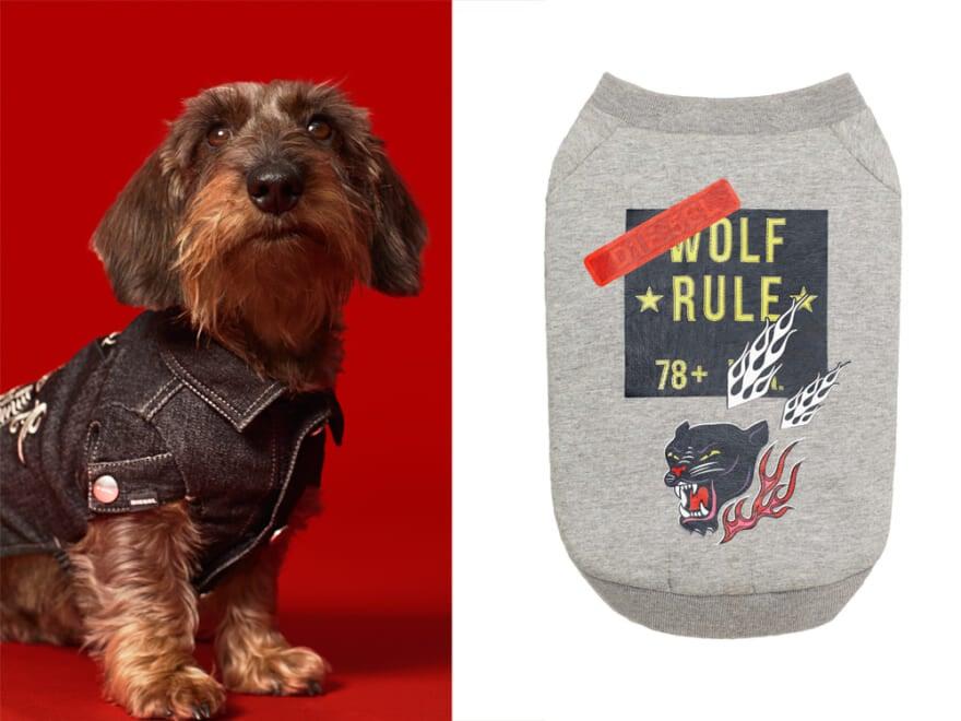 ディーゼルから初のドッグウェアコレクション!デニム&スウェット地で愛犬を格別おしゃれに